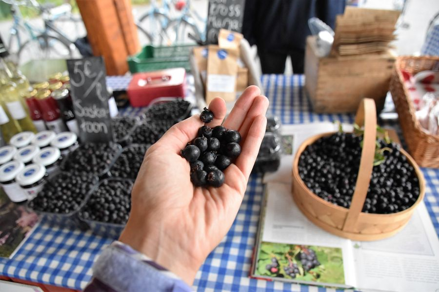 saskatoon-berries-finland