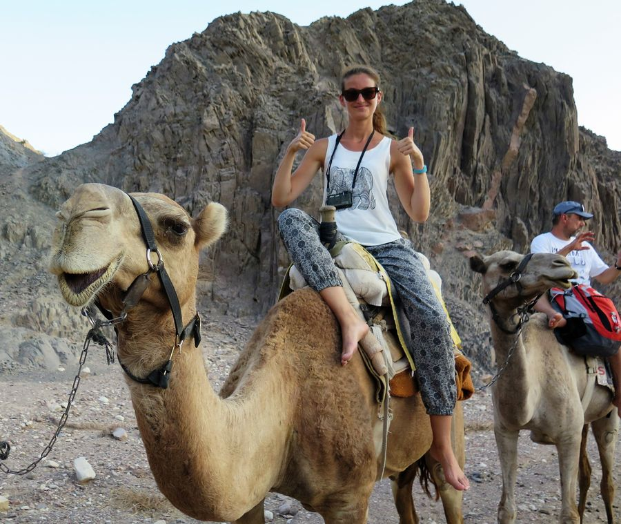 camel-ranch-eilat-5