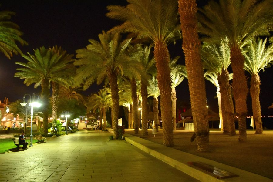 holidays-in-eilat-israel-1