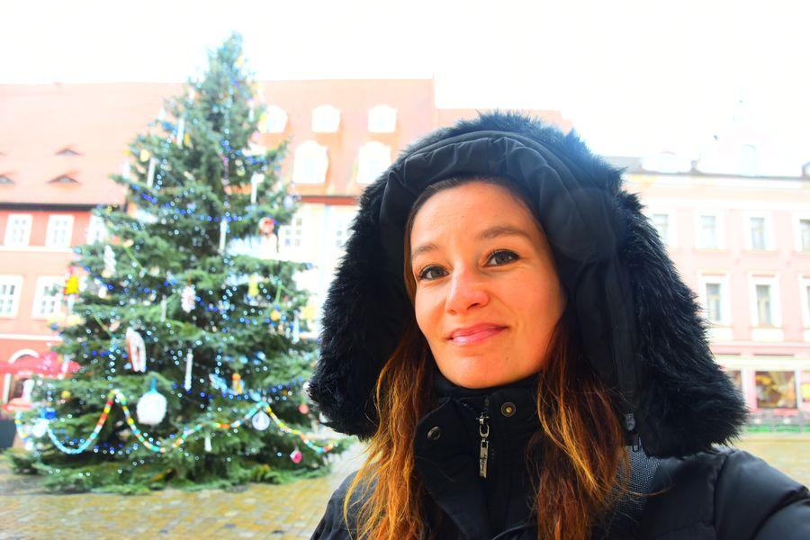 christmas-market-cheb-vanocni-trhy-cheb-things-to-do-in-cheb-czech-republic-109