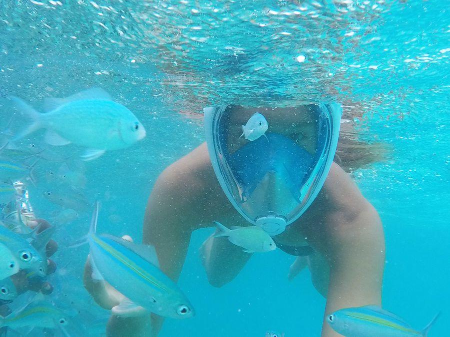snorkeling at Madivaru Finolhu Maldives