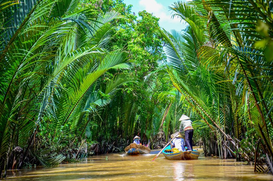 Paddle boats in the Mekong Delta