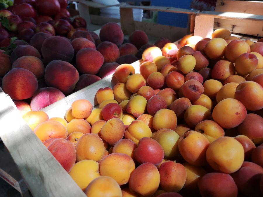 Mostar market apricots