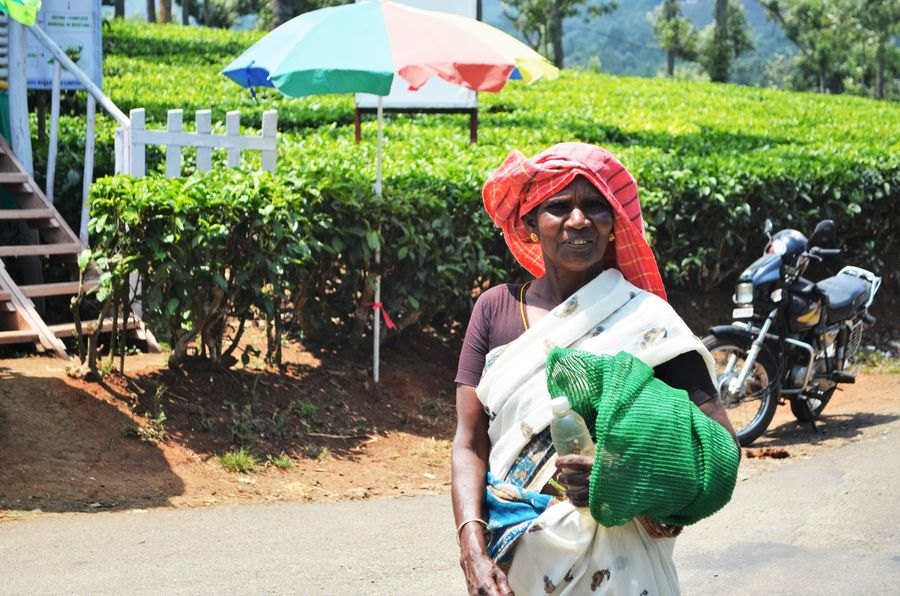 a kind local woman in Munnar