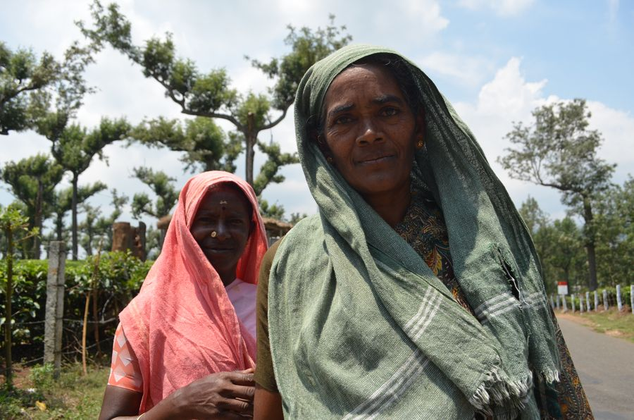 local women in Munnar
