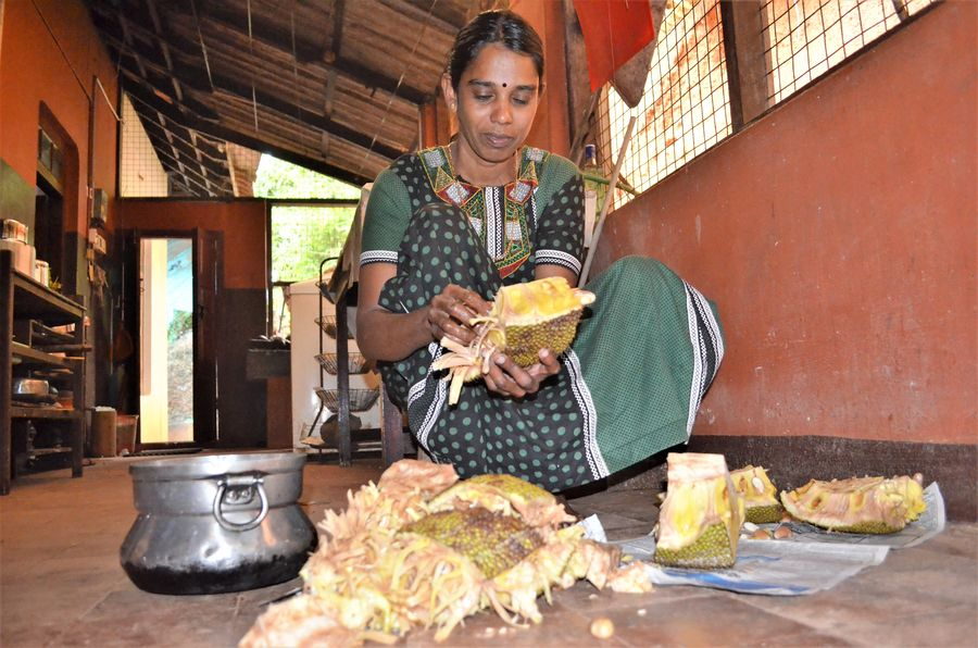 preparing jackfruit for eating