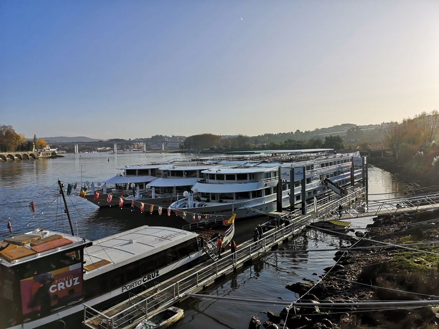 Vegan Cruise 2020.My Lovely Experience On The Douro River Vegan Cruise Crazy